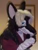 khyle: (Pondering - Fursuit)