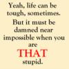 brock_tn: (that stupid)
