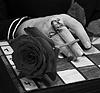 glornaith: (fairy chess)
