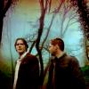 amphigory: (supernatural: together)