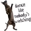jamjar: dance like nobody's watching (dance)