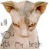 jamjar: killyou with my brain (killyou with my brain)