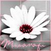 misanagi: (Flower)
