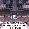 sarcasticcinders: (Hockeytown)