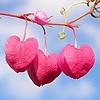 skykissed: (pink -- tree hearts)
