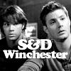 flynn_boyant: (Supernatural - the boys)