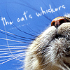 lucybird: (Whiskers)