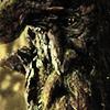treeshepherd: (oldest)