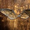 silverthorne: (Wings)