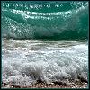 silverthorne: (Green Wave)