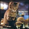 silverthorne: (Mama?!)