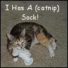 silverthorne: (Catnip Sock)