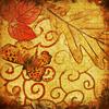 silverthorne: (Autumn Butterfly)