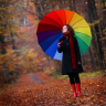 powerlines: (stock rainbow umbrella)