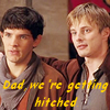 astri13: Hitched (merlin)