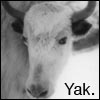 delphi: (yak)