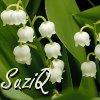 suziq: (SuziQ-Lily of the Valley)