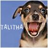 talitha78: (beet bubba yawn)