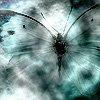 eclectic_friends: A butterfly seen in storm, or the abstract version thereof. (butterfly in a storm)