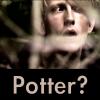 vaysh11: Potter? (a_Potter?)