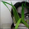 anotsu_kagehisa: by agadinmar (bamboo)