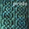 pensnest: cabled section of knitting in deep green variegated yarn (Knitting pride)
