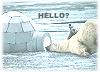incidental_fire: polar bear saying hello (Default)