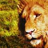 aslandish: (Discernment)