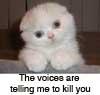 sanura: (voices kill angry)