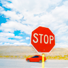 chrysalitron: (stop sign)