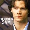 yourlibrarian: SuspiciousSam-janglyjewels (SPN-SuspiciousSam-janglyjewels)