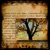 ariadnem: (tree)