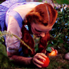 piracy: (apples)