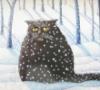 latbrand: (зимний кот)