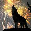 wolfpurplemoon: (wolf: fireworks)