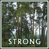 meirwen_1988: (Strong)
