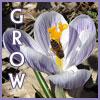meirwen_1988: (Grow)