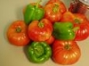 bradygirl_12: (peppers_and_tomatoes)