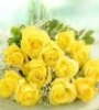 bradygirl_12: (yellow roses)