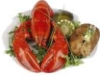 bradygirl_12: (lobster dinner)