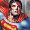 bradygirl_12: (superman (red-&-gray))
