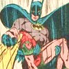 bradygirl_12: (batman--robin (hurt--carry))