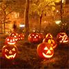 bradygirl_12: (jack o'lanterns (glowing))