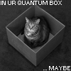 mmerriam: (Quantum Cat)