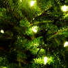 alwayswondered: Fairy lights glowing amidst Christmas tree branches. (Christmas time (don't let the bells end))