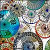 kelliem: parasols (parasols)