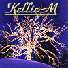 kelliem: bare tree wrapped with lights (yule)