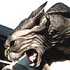 kelliem: angry sphinx cat (peeved)