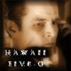 dontkillspike: (hawaii five-0)