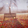 justfornow: ([Stock] {Autumn} Park bench in leaves)